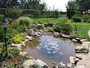 Пропоную  роботи  по  ландшафтному  дизайну  та  систем  поливу