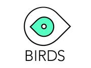 Видео продакшн студия BIRDS производство рекламных роликов