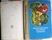 Лекарственные растения Украины (справочник для сборщика и заготовителя