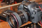 Canon 6D/Canon 5D Mark III/Nikon D90/Nikon D7000.