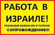 Работа в Израиле вакансии. Работа в Израиле для украинцев. Приглашение