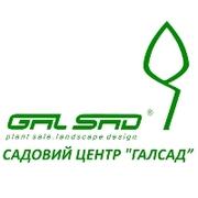 ГалСад,  садовый центр